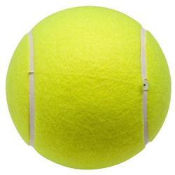 PELOTA TENIS JUMBO BALL
