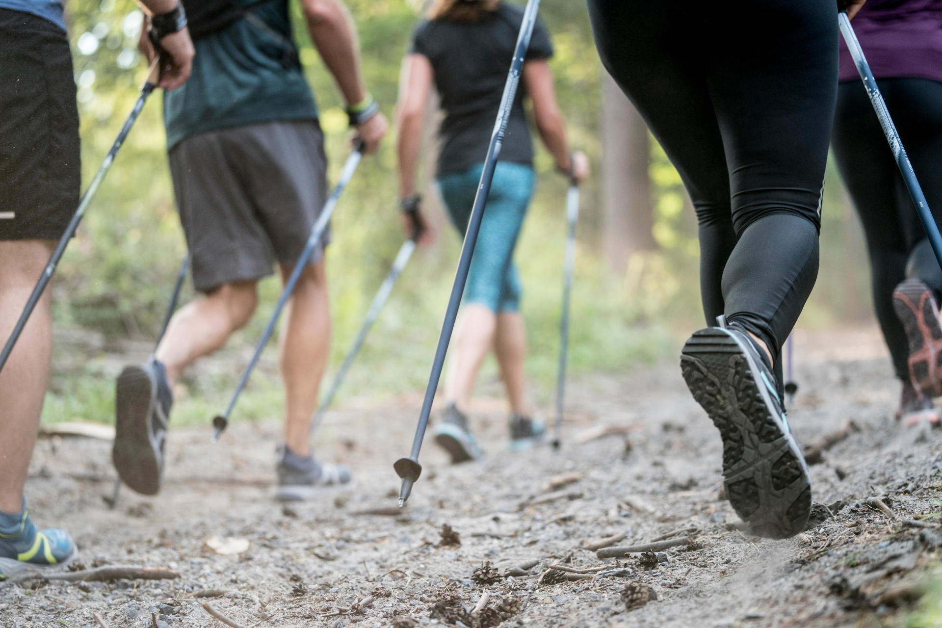equip-yourself-for-Nordic-walking