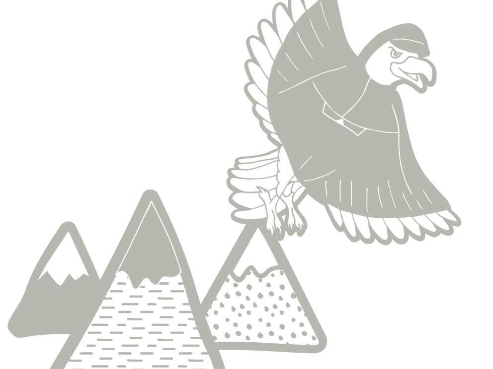 free-printable-colouring-children-animals-mountain-vulture