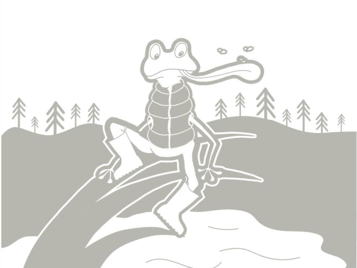free-printable-colouring-children- animals-mountain-frog