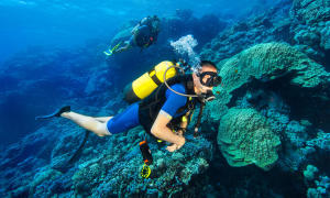 Pourquoi devenir plongeur autonome ?