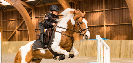 Alt/comment-choisir-sa-selle-d-equitation-obstacle