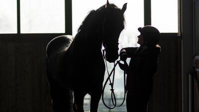id%C3%A9e-cadeaux-cavalier-communication-cheval.jpg