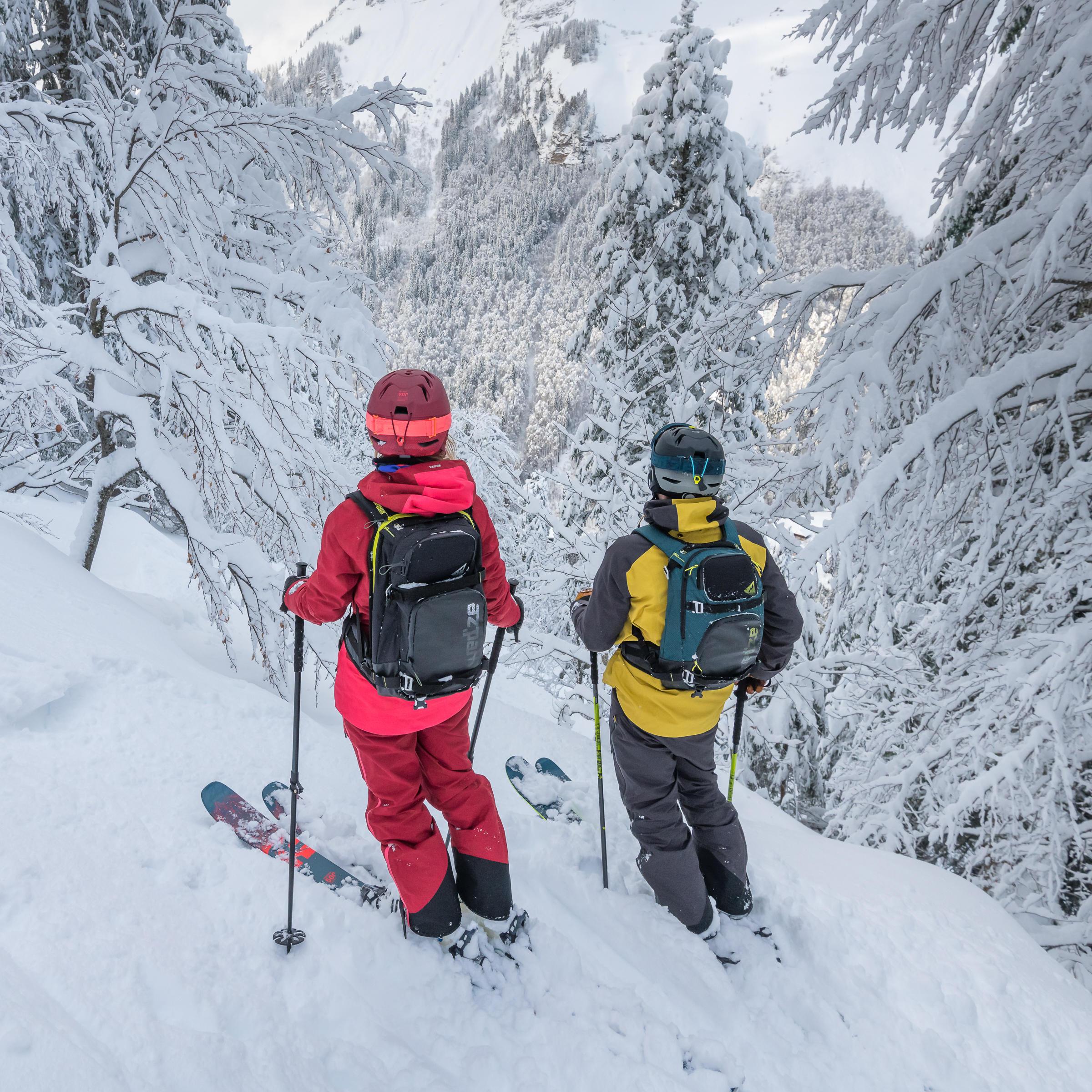 ski freeride expert