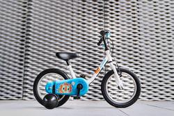 100 14-Inch Bike...