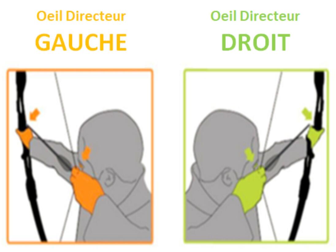 OeilDirecteur