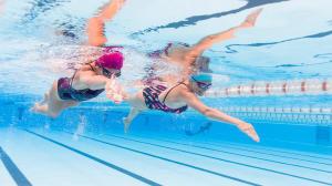zwemmen in al zijn aspecten