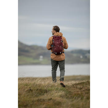 Rugzak wandelen in de natuur NH100 30 l bordeaux