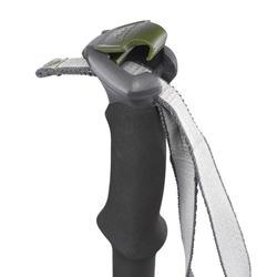Wanderstock MH500 grün
