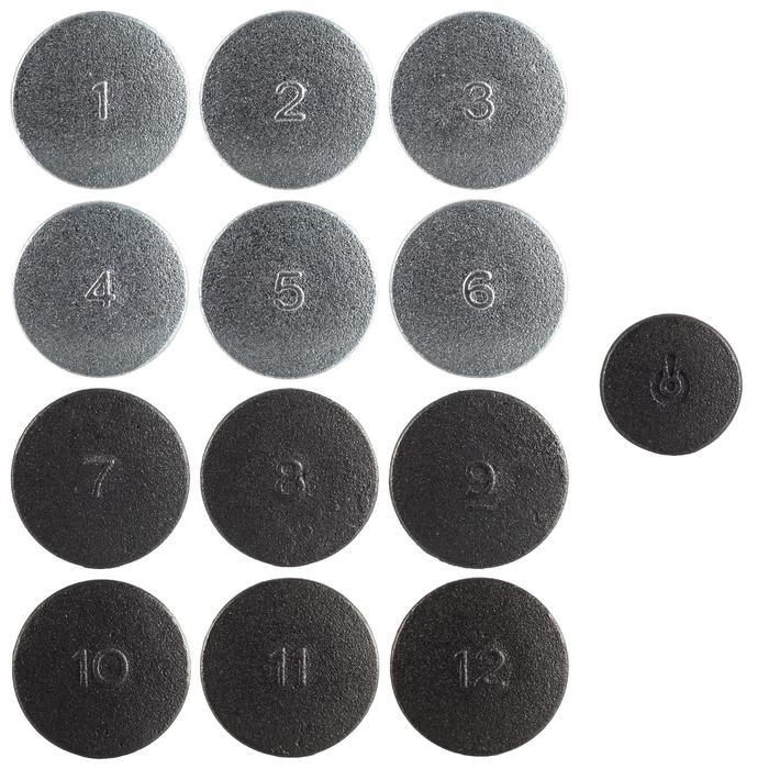 Set van 12 gekleurde schijven van gietijzer + 1 maître