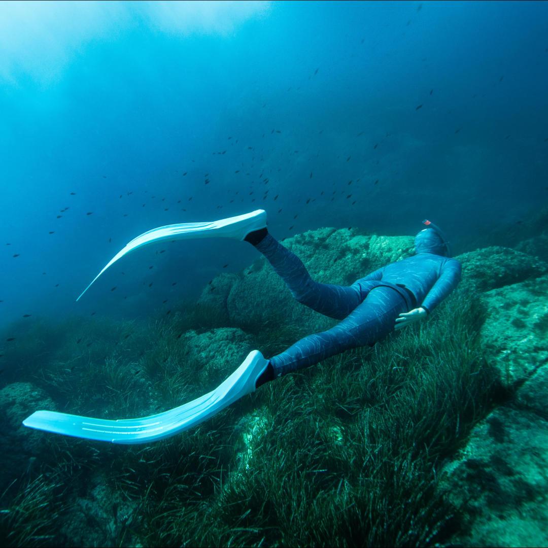 Lexique De L Apnee Freediving