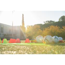Set van 40 trainingshoedjes Essential 4 kleuren (geel, oranje, grijs, blauw)