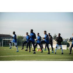 Fußball-Trainingshose T500 Erwachsene marineblau