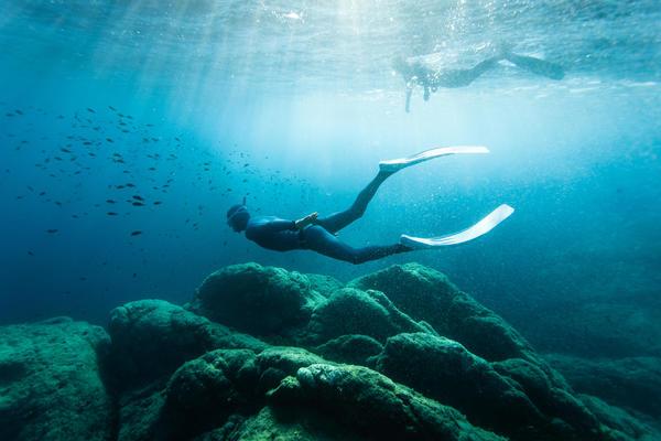 Genieße mit Free Diving die Ruhe in den Tiefen des Ozeans