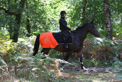 Uitrijdeken ruitersport oranje en zwart - 158411