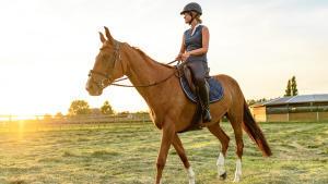 Amazone te paard