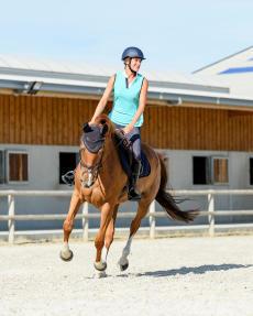 cavalière sur son cheval au galop