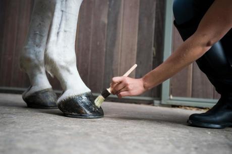 Alt/comment et pourquoi curer les pieds ?
