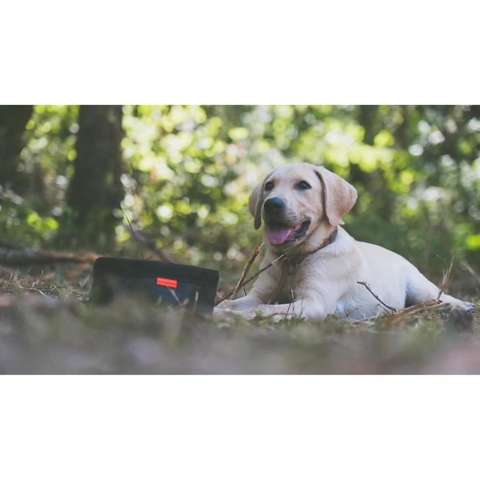 Opvouwbare hondeneetbak