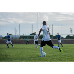 Voetbalsokken / voetbalkousen F100 wit