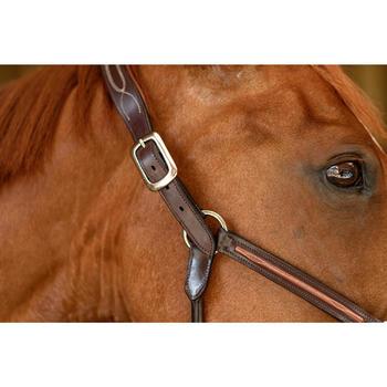 Licol cuir équitation cheval et poney 900 marron