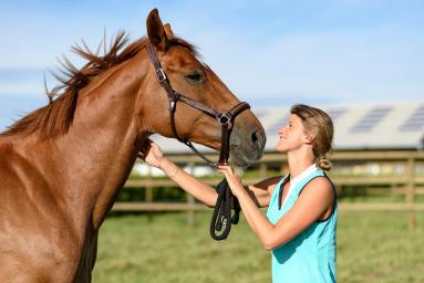 Alt/comment entretenir son cheval au pré