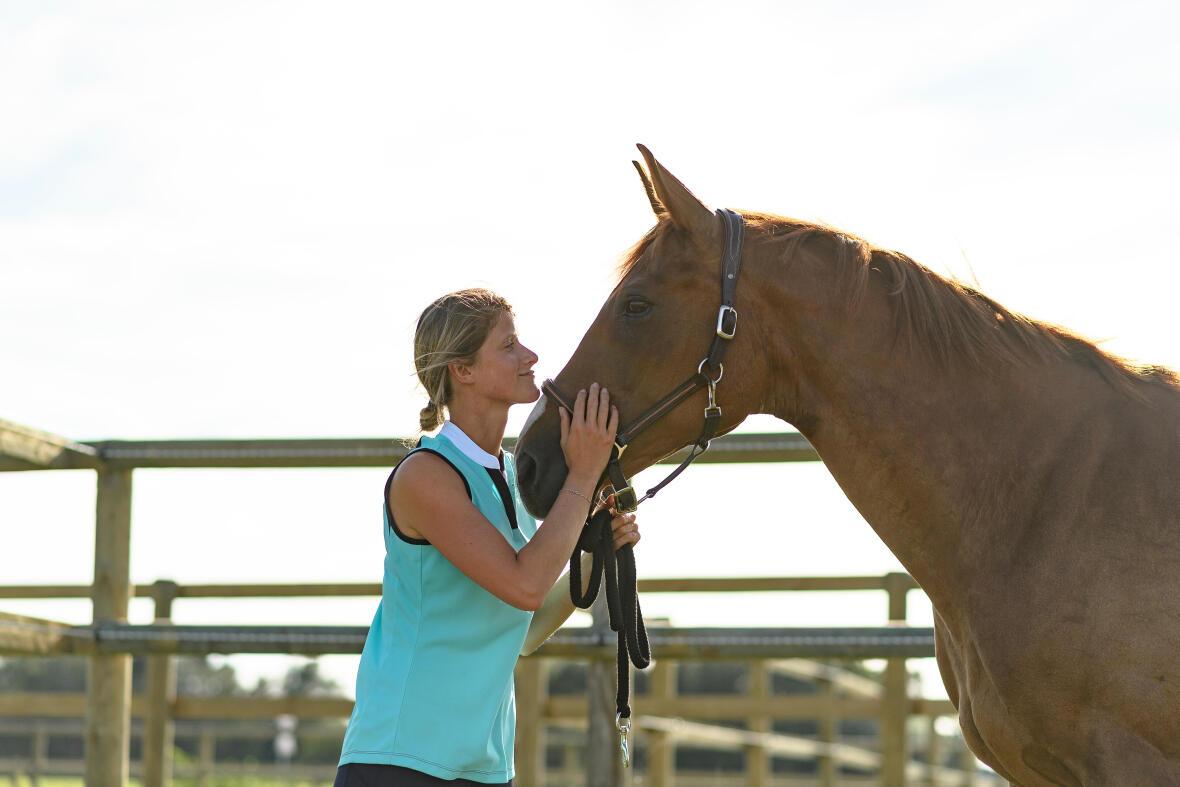 Alt/mettre son cheval au pré