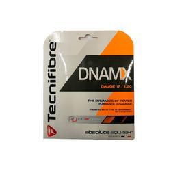 Cordaje Squash Tecnifibre TF Dnamx 1.2 mm NEGRO