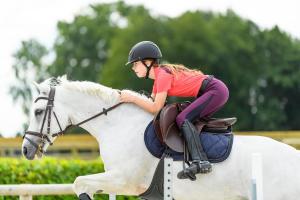 equitation santé