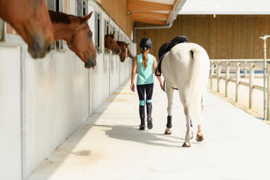 Alt/ou et a quel prix pratiquer l'équitation