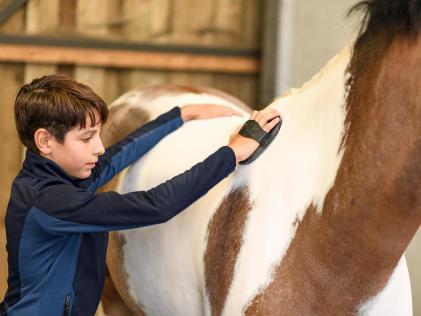 enfant qui fait le pansage d'un poney