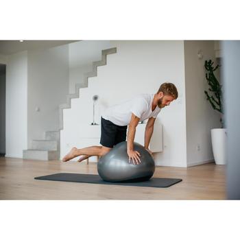 Fitnessbal - Gymball - Swiss ball Ø55cm, 65cm ,75cm met verzwaarde basis grijs