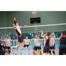 V900 Volleyball Net