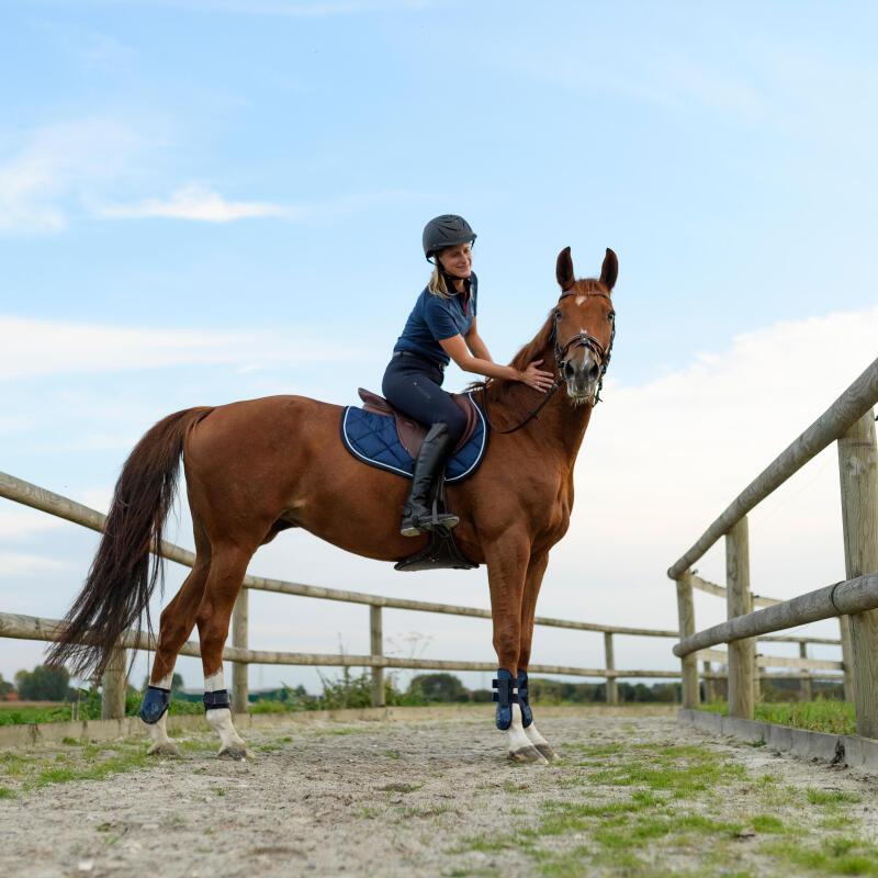 comment-apprendre-larret-son-cheval