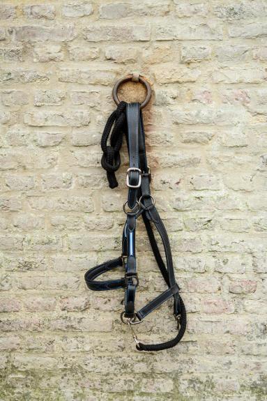 Alt/lookbook cheval