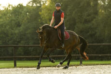 Conseil Equitation Fouganza