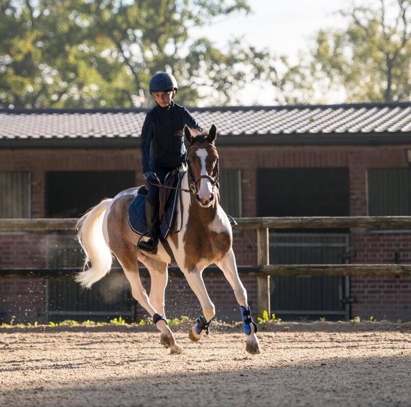 horse_ball