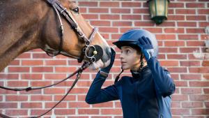 equitation premiers cours