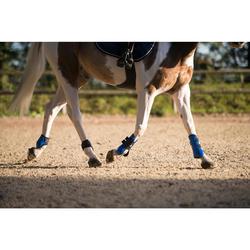 Protectores abiertos para caballo 500 JUMP azul real