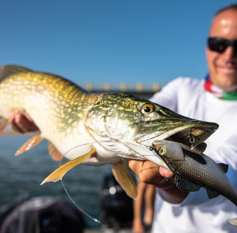 What equipment do you need to start fishing with lures?