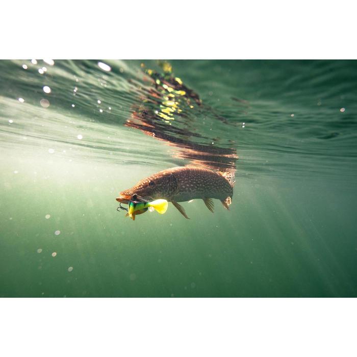 Set Gummiköder Shad Perch RTC 170 Natur/Firetiger Spinnfischen