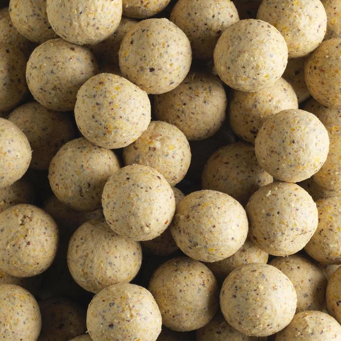bouillettes pêche de la carpe wellmix chocowhite 10 kg