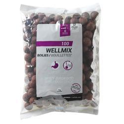 Boilies voor karpervissen Wellmix 20 mm 1 kg Spicy Birdfood