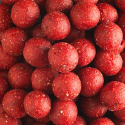 bouillettes pêche de la carpe Wellmix Boilies 20mm Fraise 1 kg