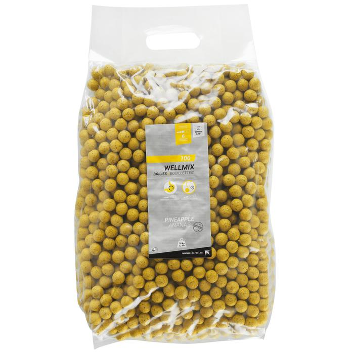 Wellmix Boilies Ananas 20 mm, 10 kg