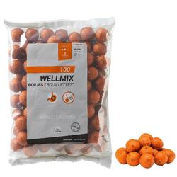 Boilies karperhengelen Wellmix 24 mm Monstercrab 1kg