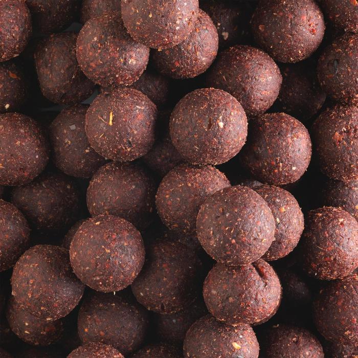Boilies Karpfenangeln Wellmix Spicy 20 mm 10 kg