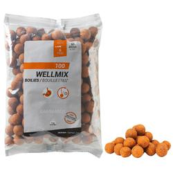 Boilies Wellmix Spicy 20 mm 1 kg