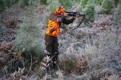 Pull chasse 500 marron