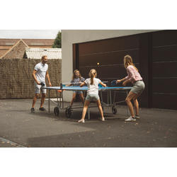 TABLE DE TENNIS DE TABLE FREE PPT 500